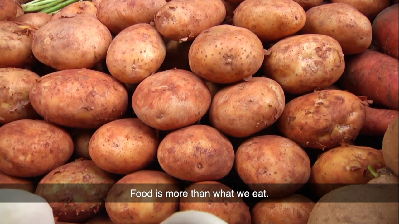 UN's Food Systems Summit hosts World Food Day 24-hour global relay conversation
